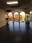 金町 レンタルスタジオ 季節の風景